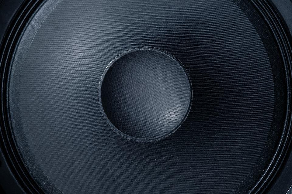 Model S speaker
